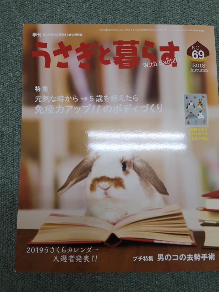 『うさぎと暮らす』69号に…店長のコラムが掲載!